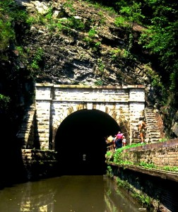 attractions-tunnel